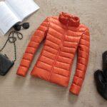 Orange / Collar