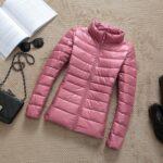 Light Pink / Collar
