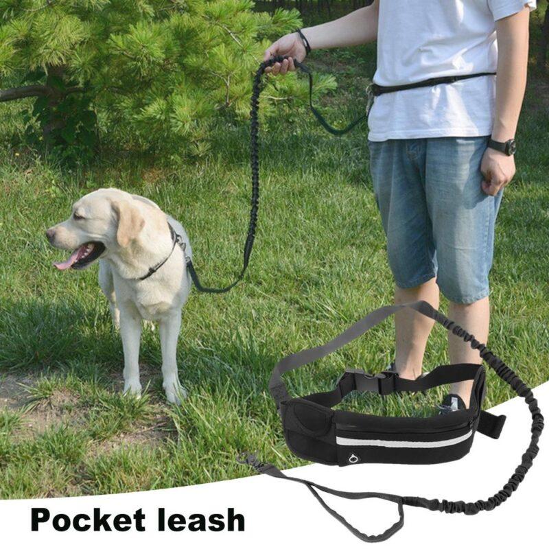 Ultimátní hands-free vodítko pro psy Domácí mazlíčci 3